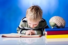گفتاردرمانی آنلاین آزادگان کرج یادگیری مبتنی بر مغز  + گفتاردرمانی آنلاین ایران یادگیری مبتنی برمغز4